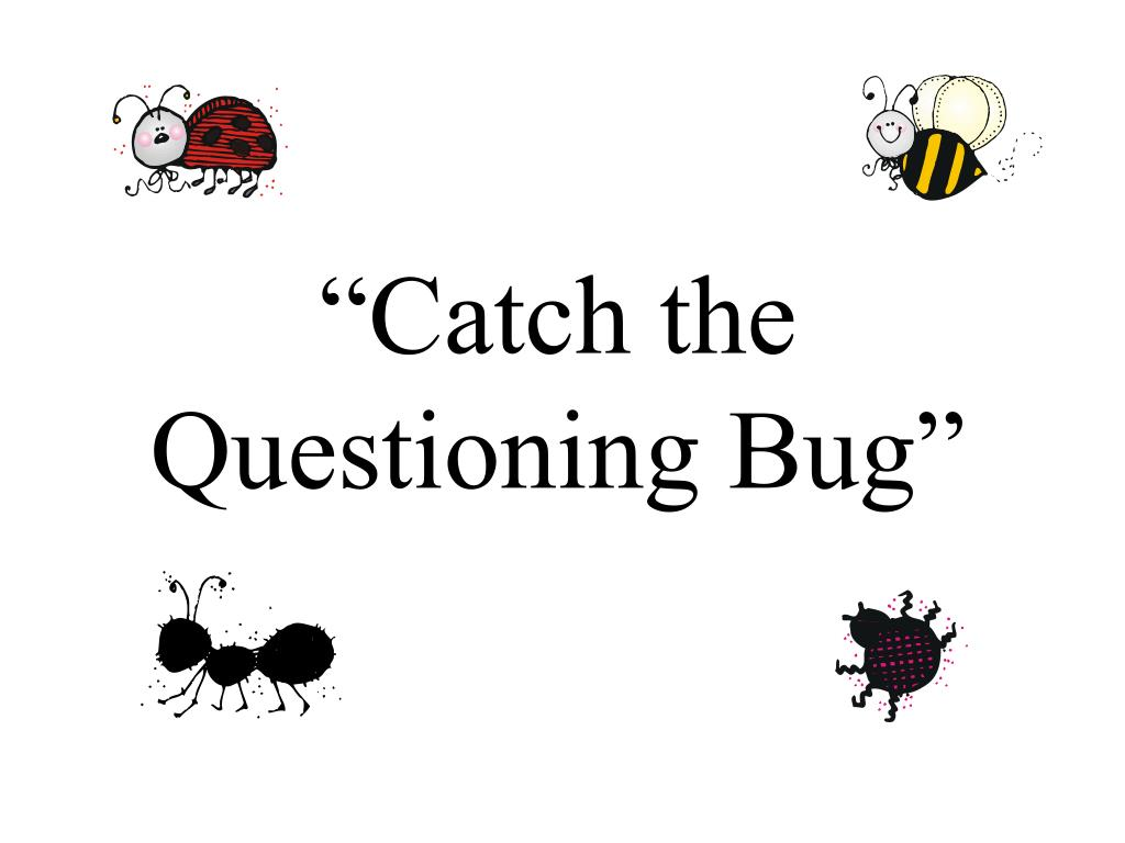 """Catch the Questioning Bug"""