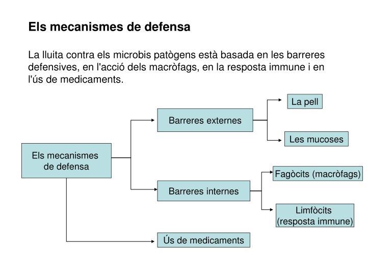 Els mecanismes de defensa