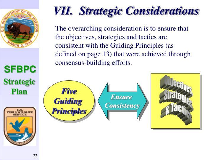 VII.  Strategic Considerations