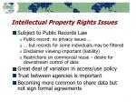 intellectual property rights issues