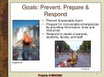 goals prevent prepare respond