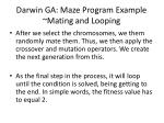 darwin ga maze program example mating and looping