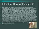 literature review example 1