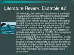 literature review example 2