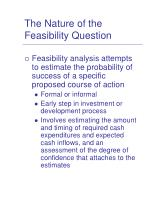 the nature of the feasibility question