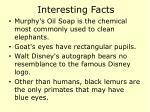 interesting facts84