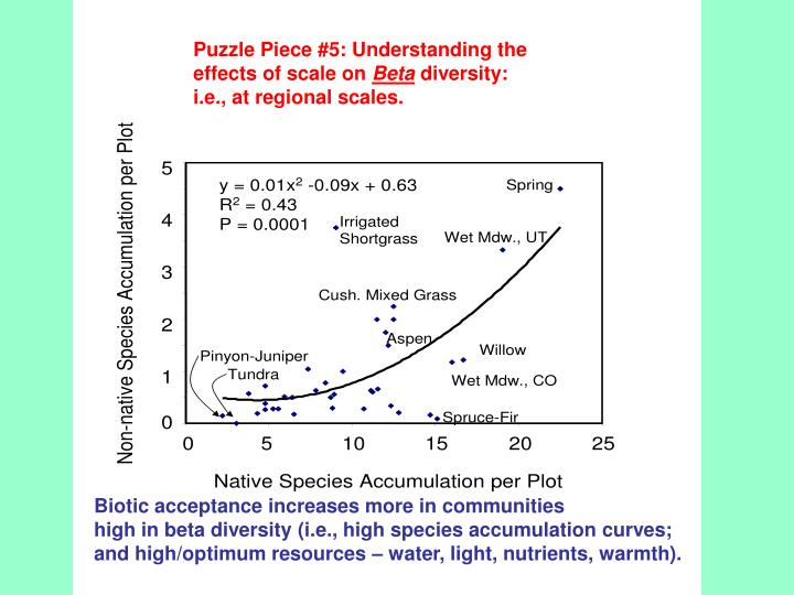 Puzzle Piece #5: Understanding the effects of scale on