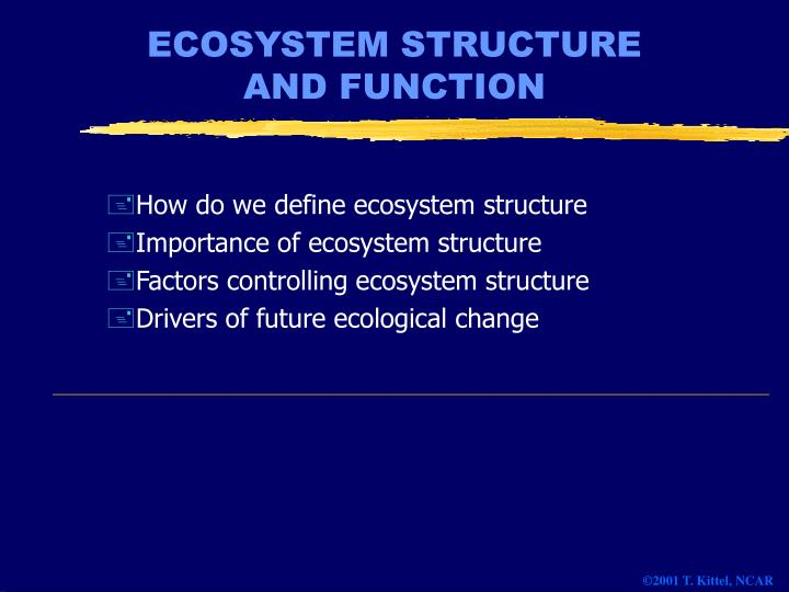 ecosystem structure and function n.