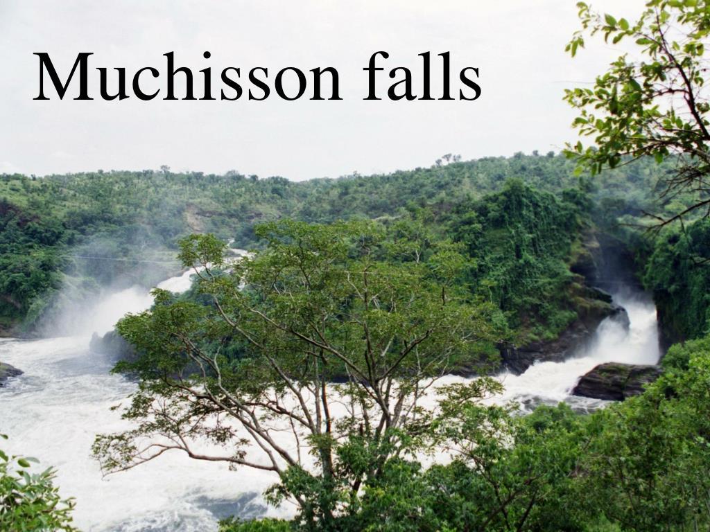 Muchisson falls