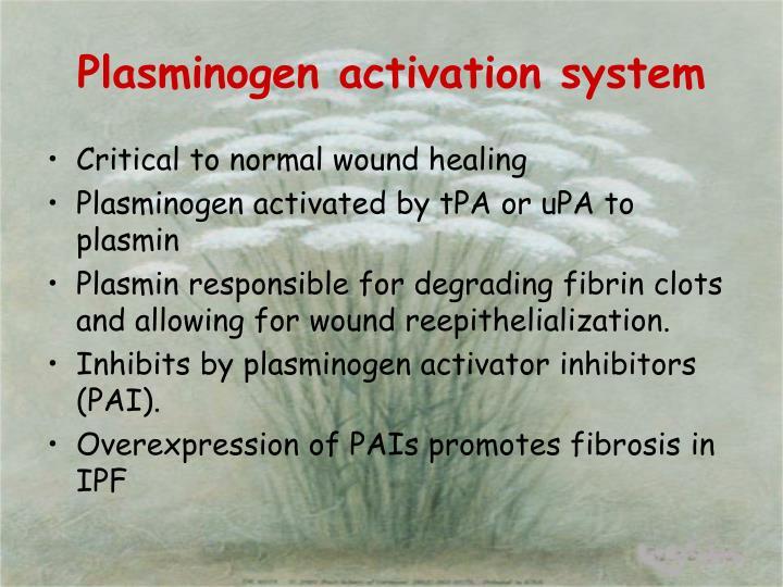 Plasminogen activation system