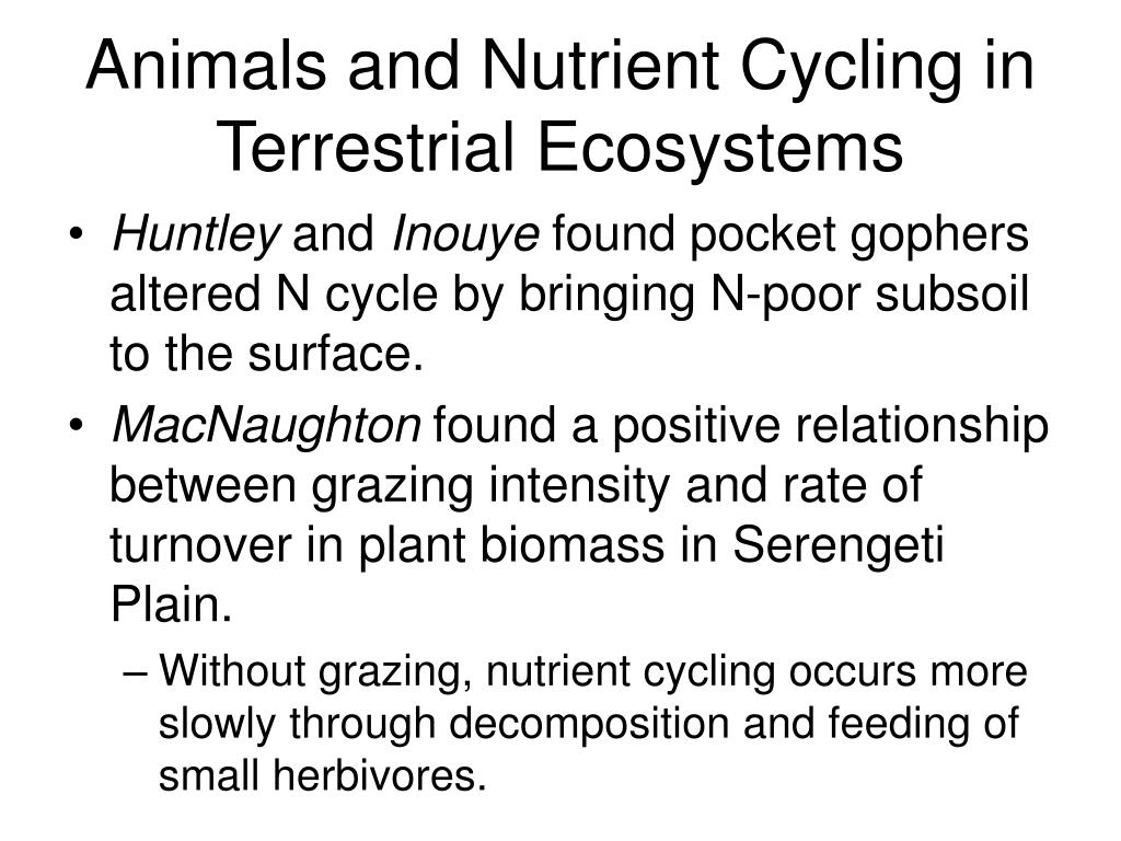 Animals and Nutrient Cycling in