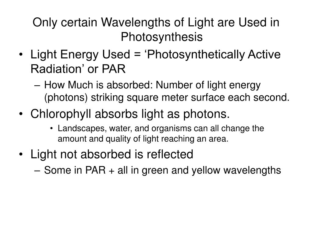 Only certain Wavelengths of Light are Used in Photosynthesis