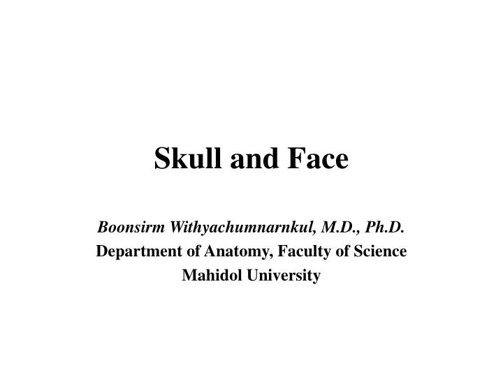 skull and face n.