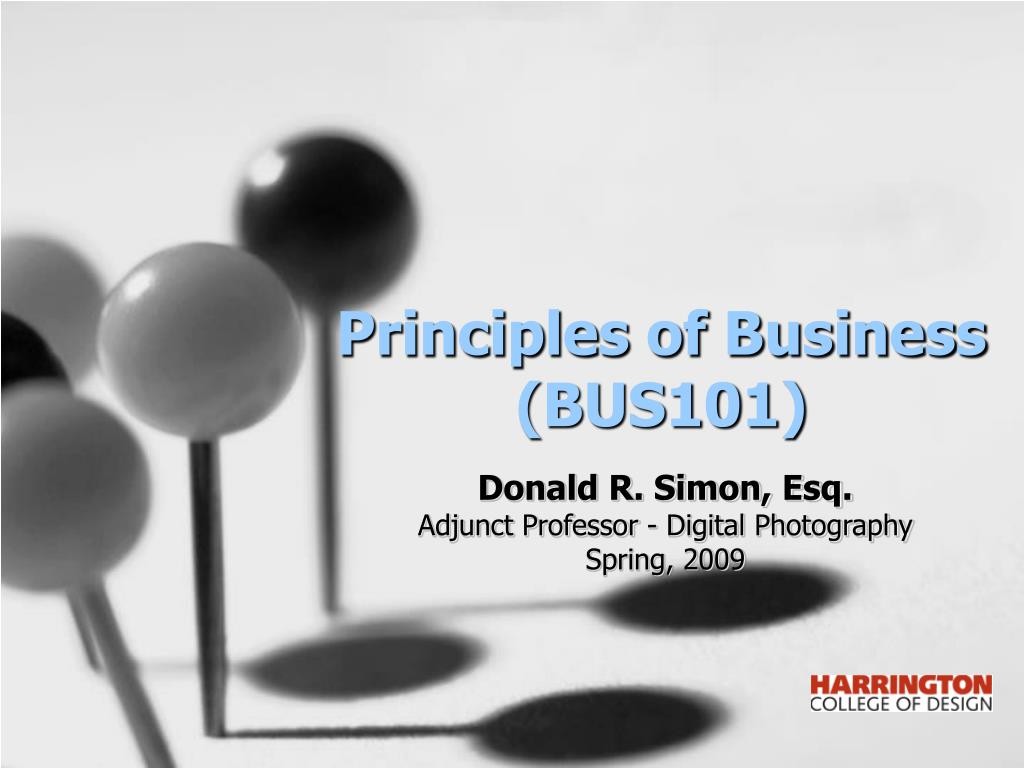 principles of business bus101 l.