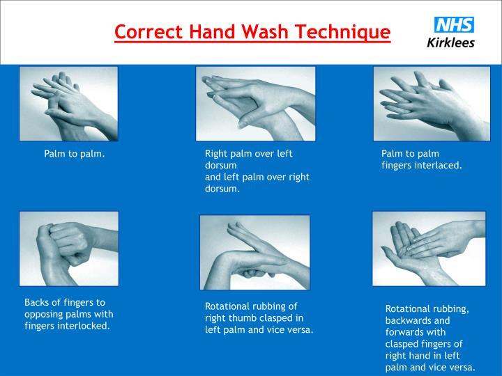 Correct Hand Wash Technique