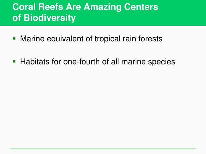Coral Reefs Are Amazing Centers