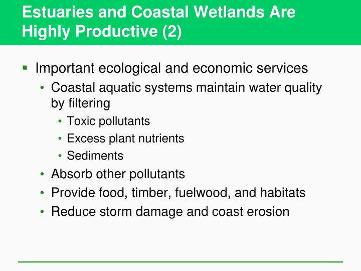 Estuaries and Coastal Wetlands Are Highly Productive (2)
