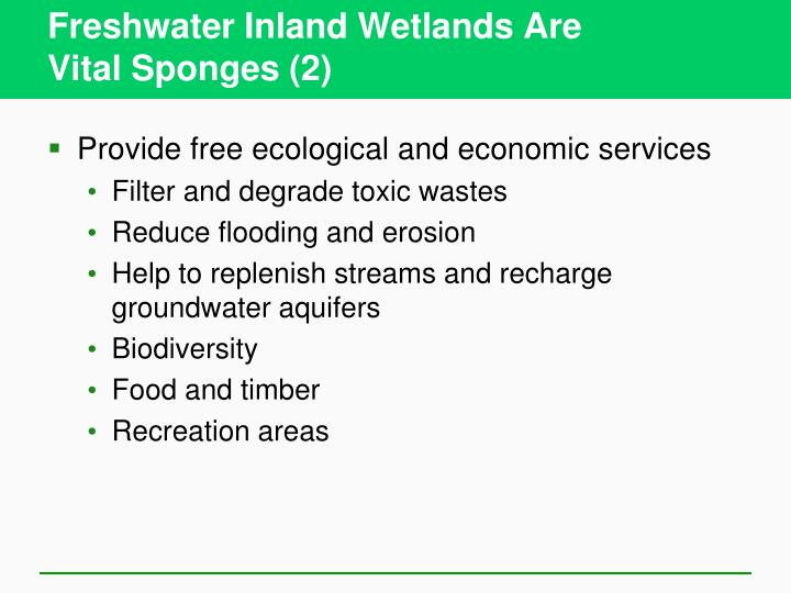 Freshwater Inland Wetlands Are