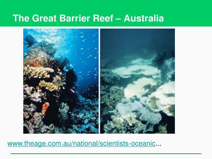 The Great Barrier Reef – Australia