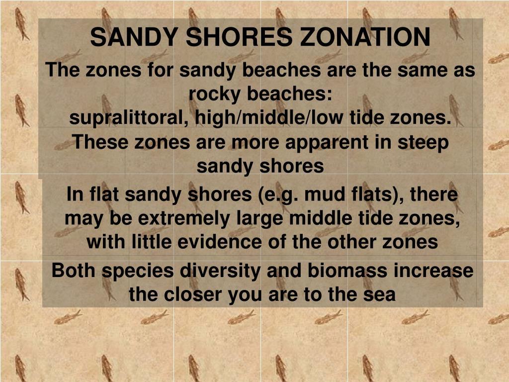 SANDY SHORES ZONATION
