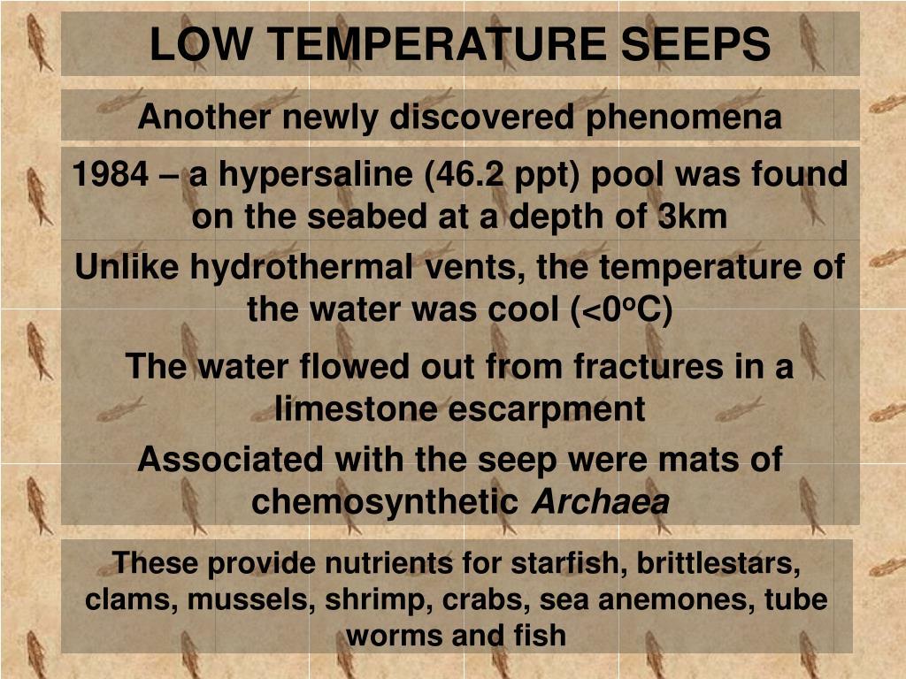 LOW TEMPERATURE SEEPS