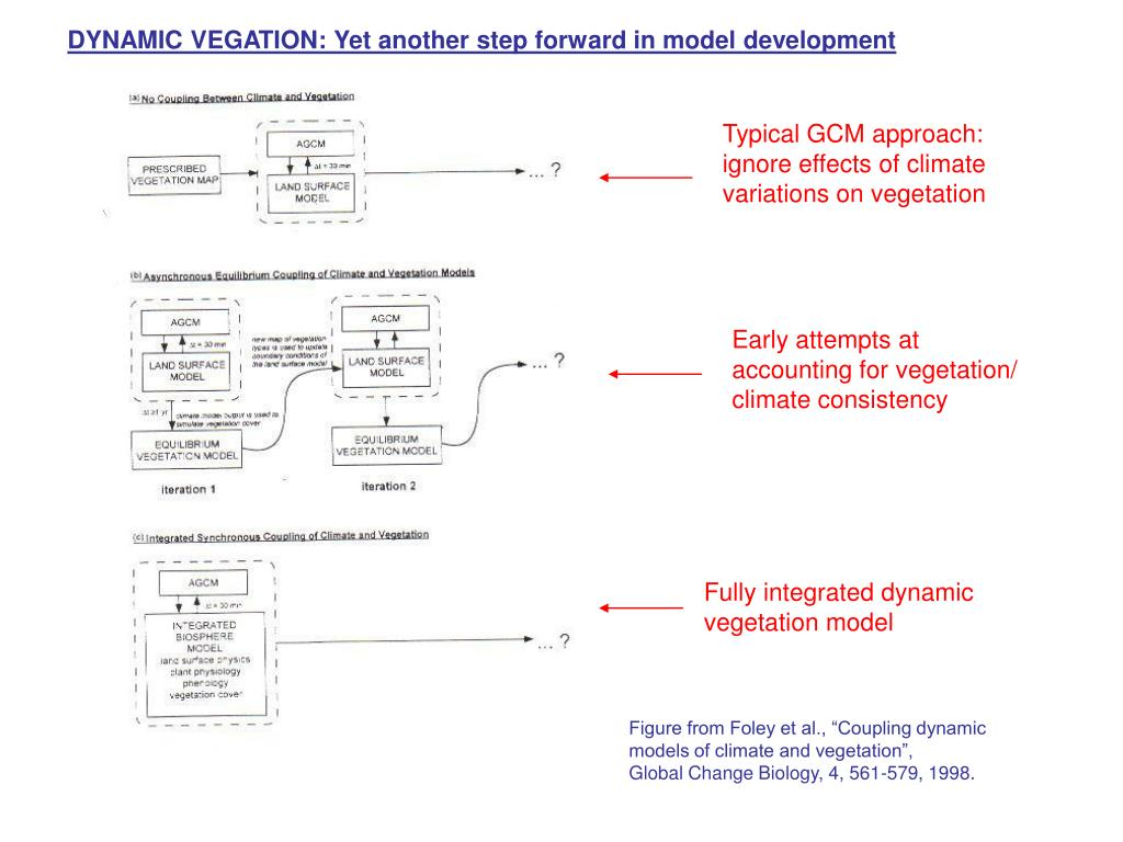 DYNAMIC VEGATION: Yet another step forward in model development