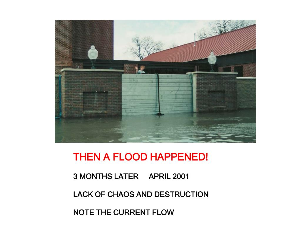 THEN A FLOOD HAPPENED!