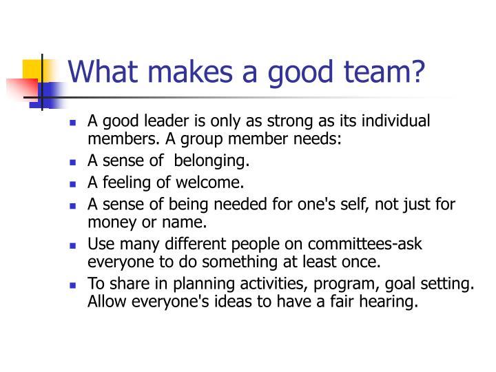 What makes a good team?
