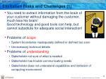 elicitation risks and challenges 1