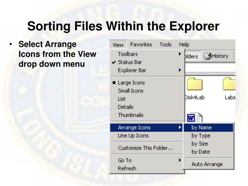 Sorting Files Within the Explorer