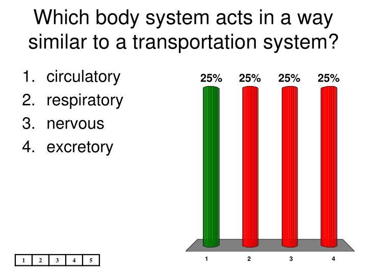 which body system acts in a way similar to a transportation system n.