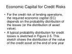 economic capital for credit risks