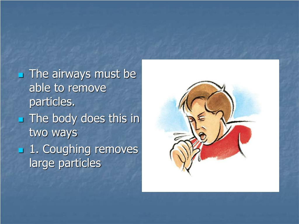 The airways must be  able to remove particles.