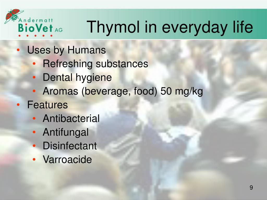 Thymol in everyday life