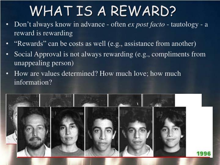 WHAT IS A REWARD?