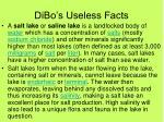 dibo s useless facts