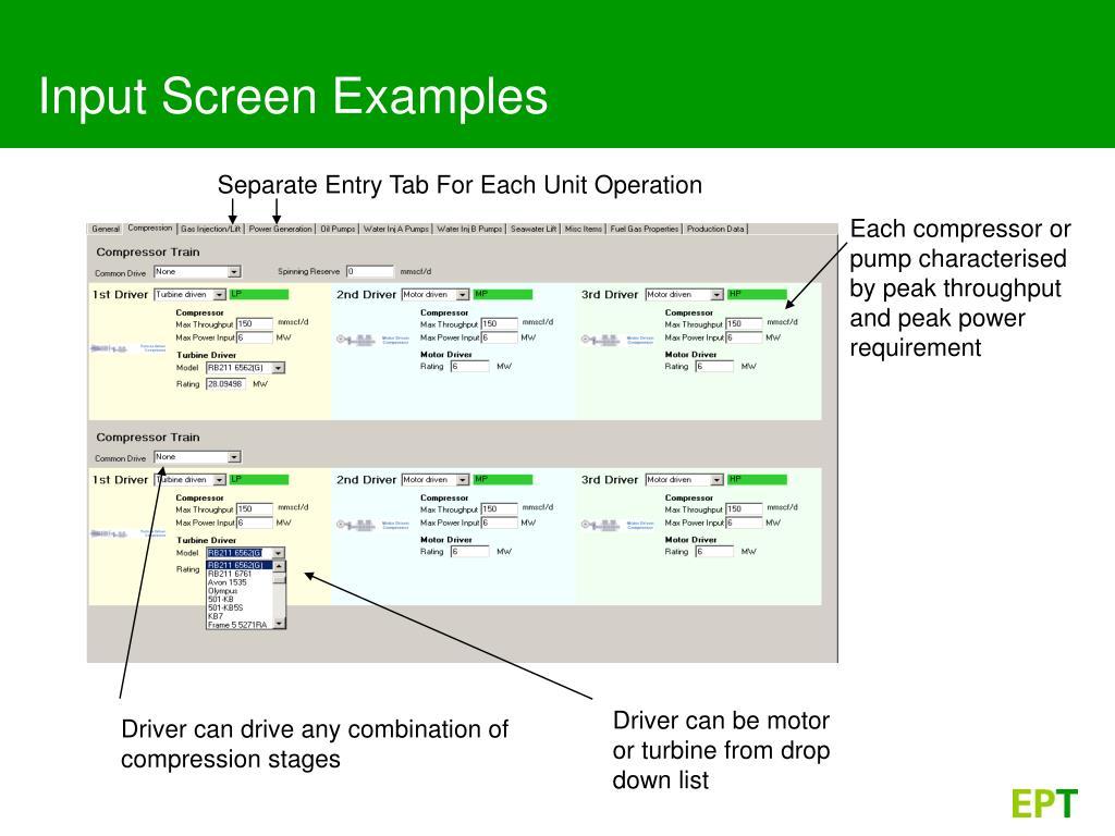 Input Screen Examples