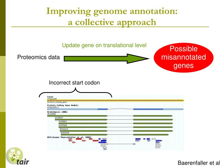 Improving genome annotation: