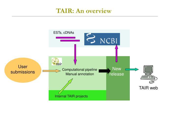 TAIR: An overview