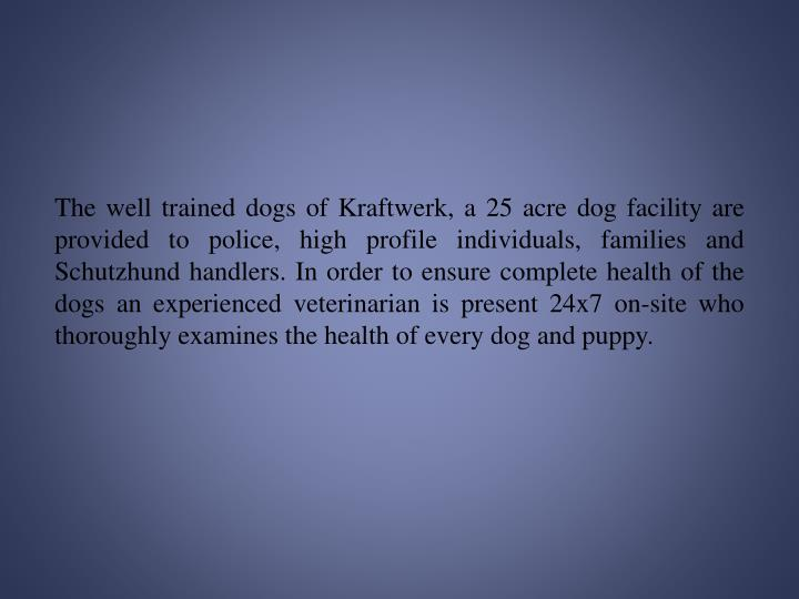 The well trained dogs of Kraftwerk, a 25 acre dog facility are provided to police, high profile indi...