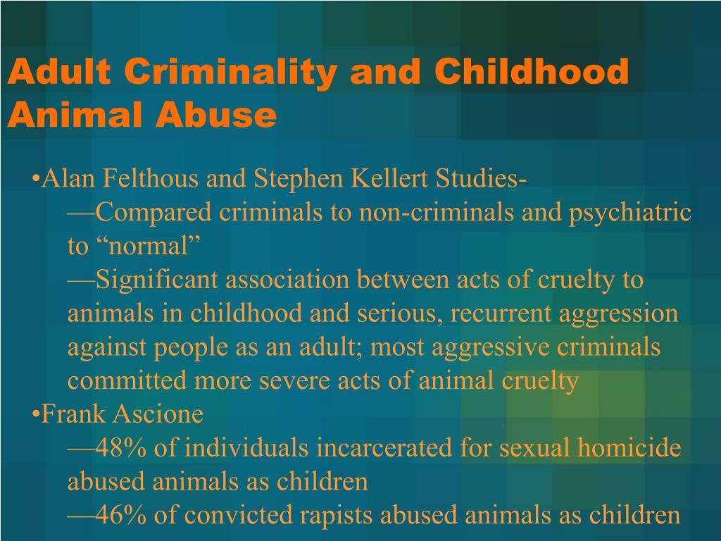 Adult Criminality and Childhood Animal Abuse