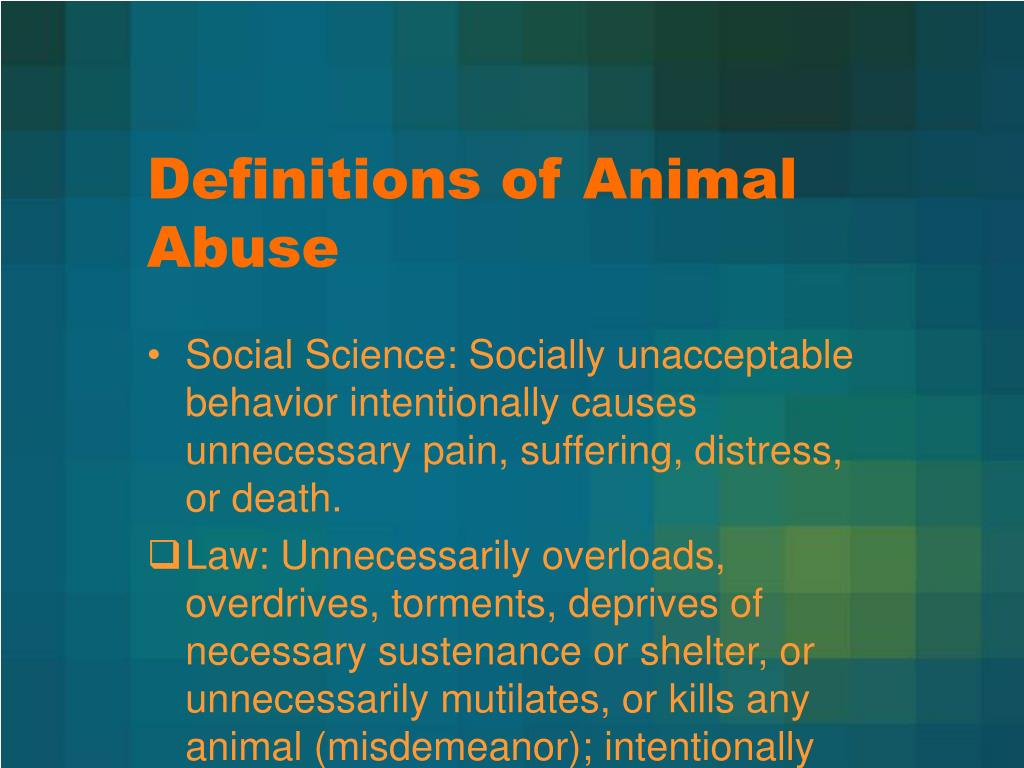 Definitions of Animal Abuse
