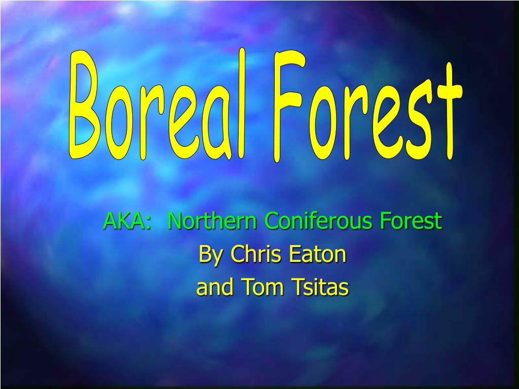 aka northern coniferous forest by chris eaton and tom tsitas l.
