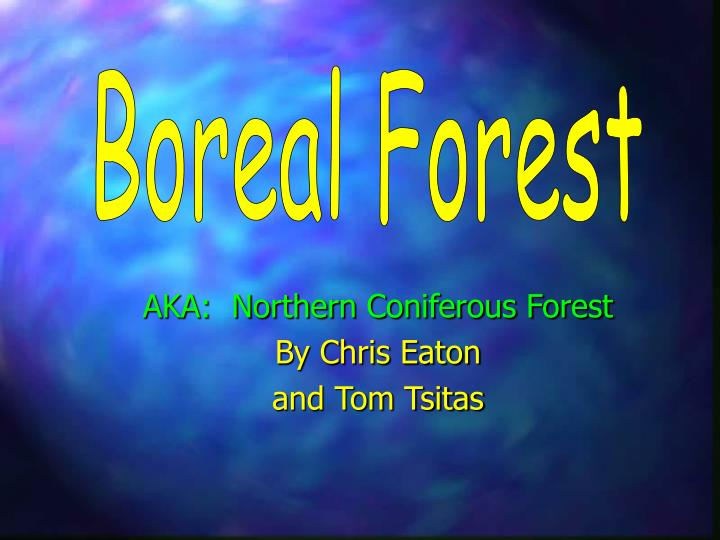 Aka northern coniferous forest by chris eaton and tom tsitas
