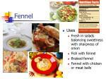 fennel23
