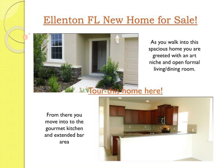 Ellenton fl new home for sale2