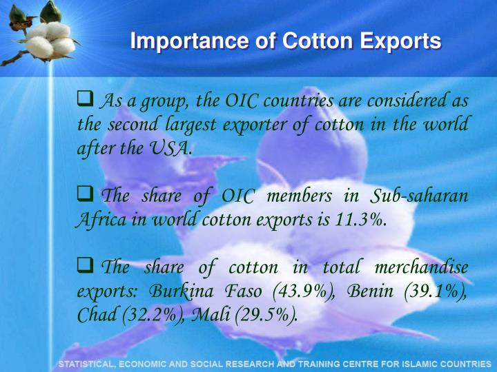 Importance of Cotton Exports