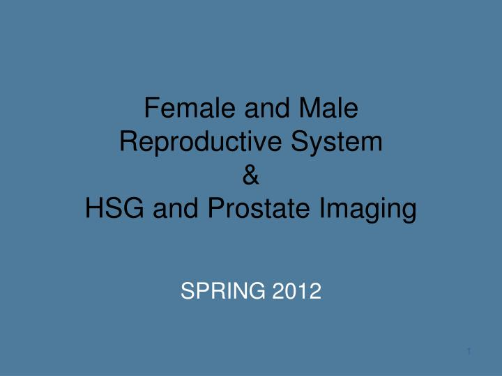 female and male reproductive system hsg and prostate imaging n.