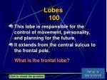 lobes 100