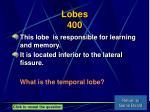 lobes 400